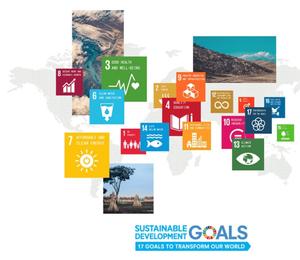 SDGs Insight
