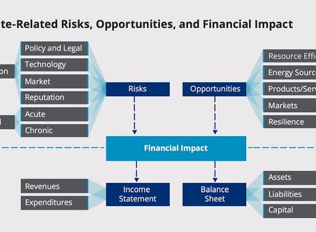 民間企業によるSDGsの活性化とTFCDの進展
