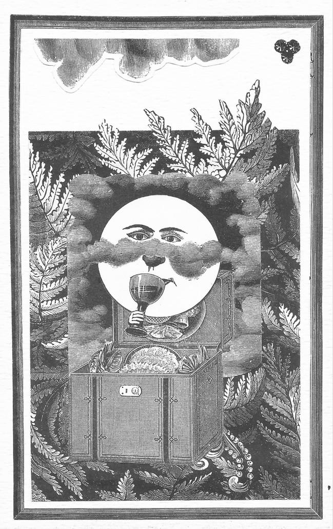 """""""Si las plumas hacen el plumaje, la cola no hace el collage.""""  Max Ernst"""