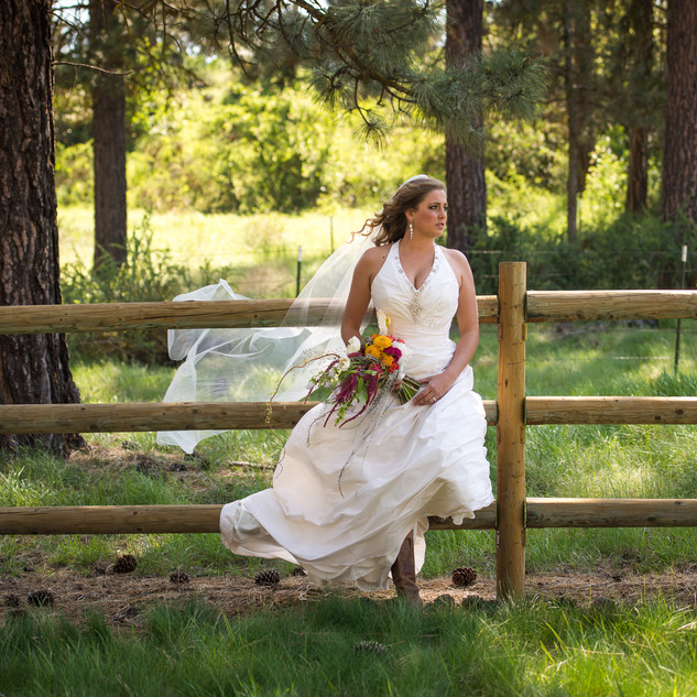 bride up by a fence