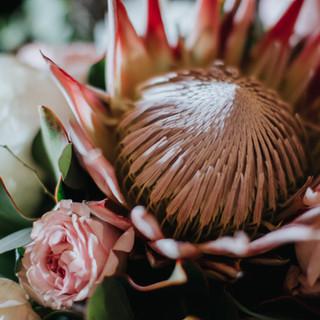close up of bouquet
