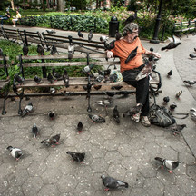 NYC Park Birdman