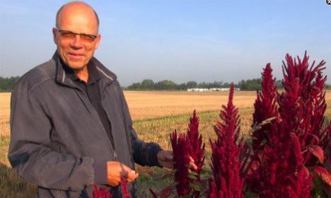 CEO of Quinoa Quality, Sven-Erik Jacobsen