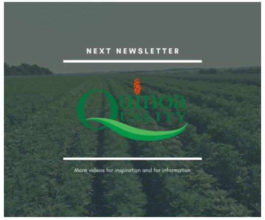 Quinoa Quality Newsletter