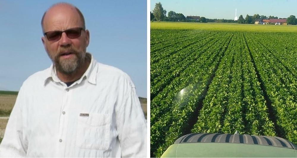 Sven Erik Jacobsen at quinoa field in Denmark