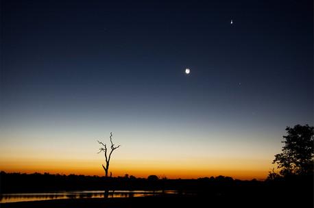 African Sunset stars.web.jpg