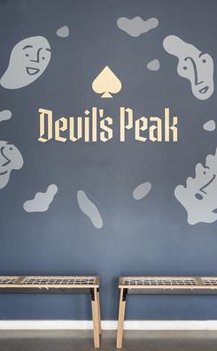 Devils Peak-4049 copy.jpg