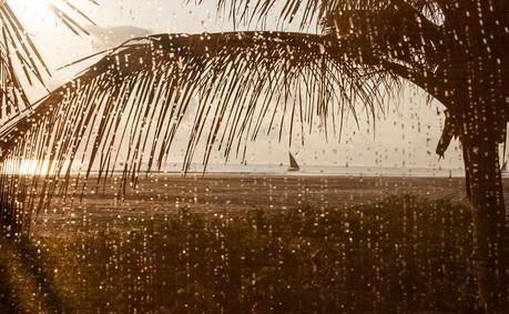 Mozambique 2007-8784 copy.jpg