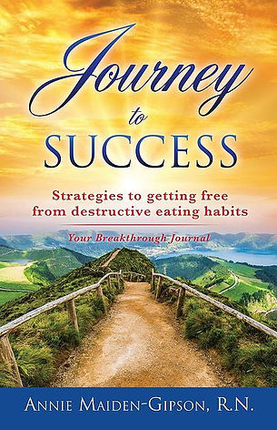 journey front cover.jpg