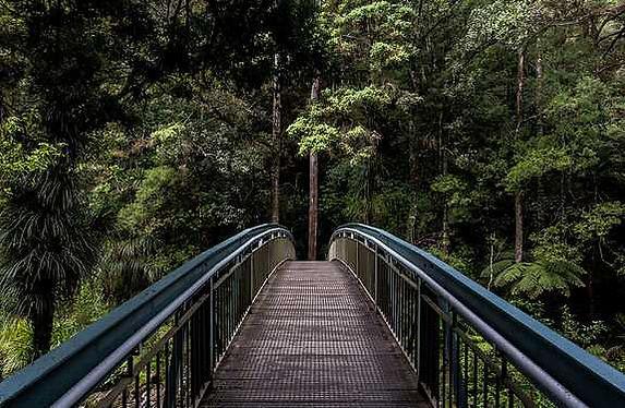 online counselling: de brug naar verbinding