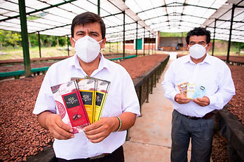 cacao Amazonas Perú 2021