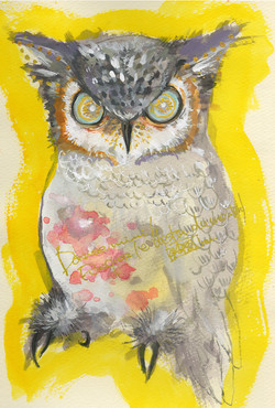konpeitou-owl00.jpg