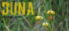 Concierto_Duna_cartel2_edited.jpg
