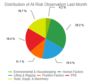 risk observations.PNG