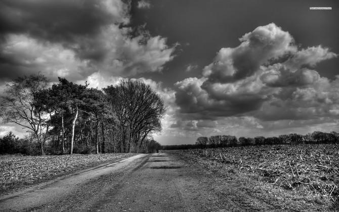 Gravel Roads to Take Us Home