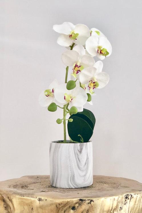 Orchid ceramic grey wood vase - white