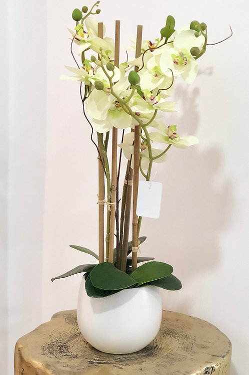 Orchid white sphere - breeze white