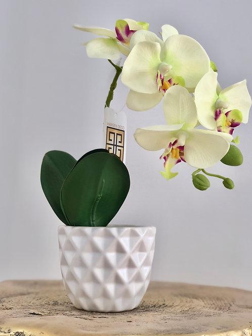 Orchid white triangles vase - Breeze white