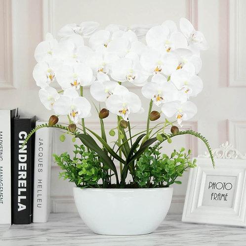 Orquídea Magnificent White (Silk)