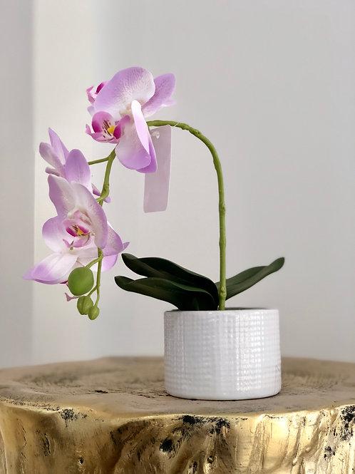 Orchid white dots vase - purple