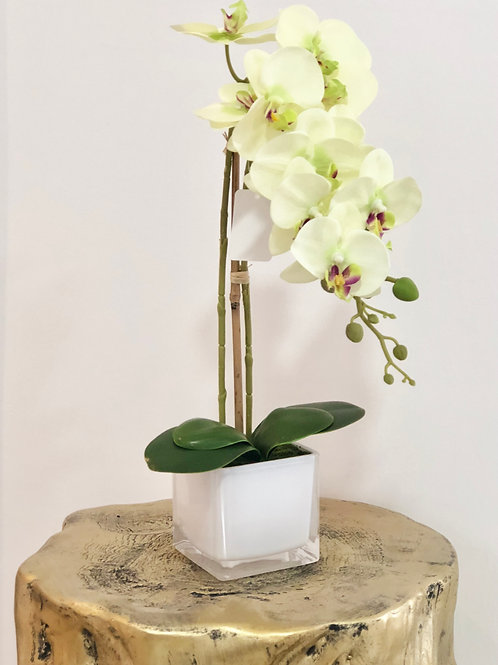 Orchid glass white vase - Breeze white