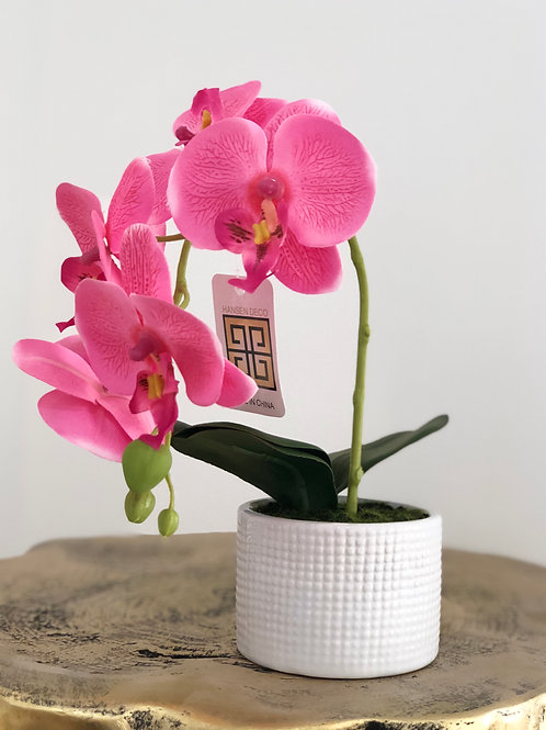 Orchid white dots vase - Pink