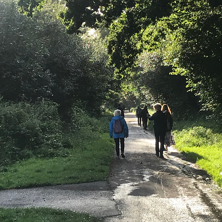 Free guided pacy Friday evening walk