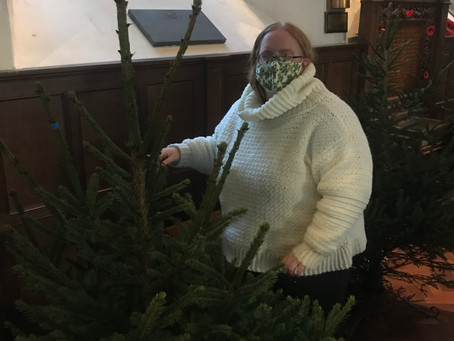 The Trees Have Arrived!