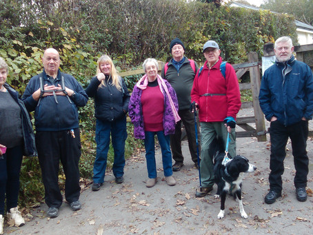 The Bodmin Way - Last Monday afternoon walk until the spring