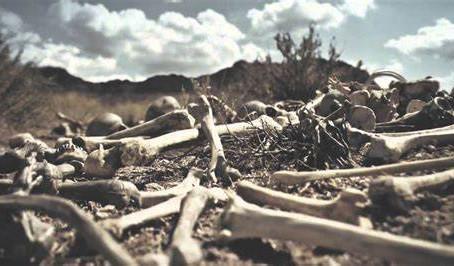 Dry Bones Live!