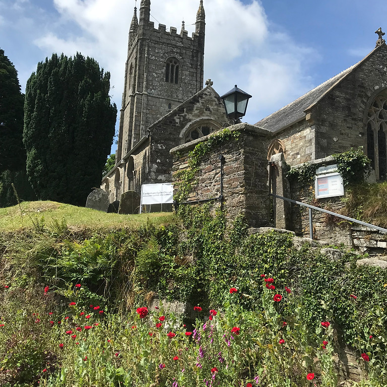 Free guided walk - St Petroc's to St Meubred's
