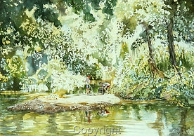 angling-river-water-trees-thorncroft-mol