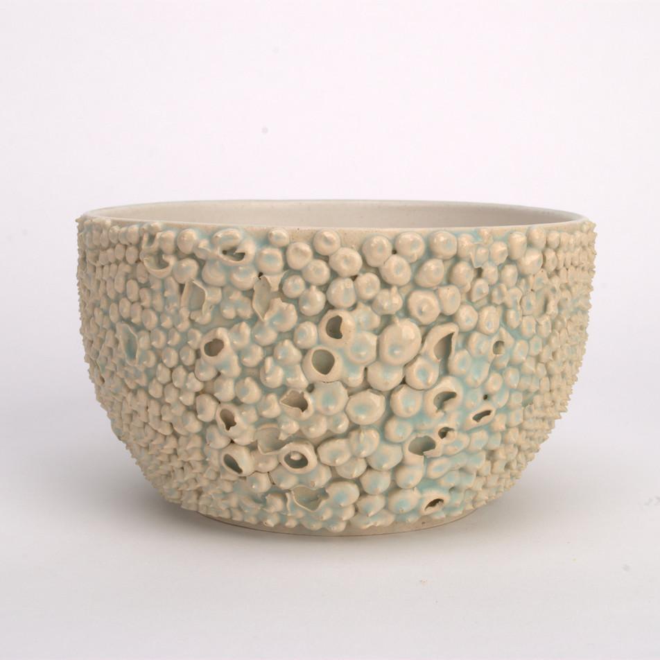 Barnacle bowl