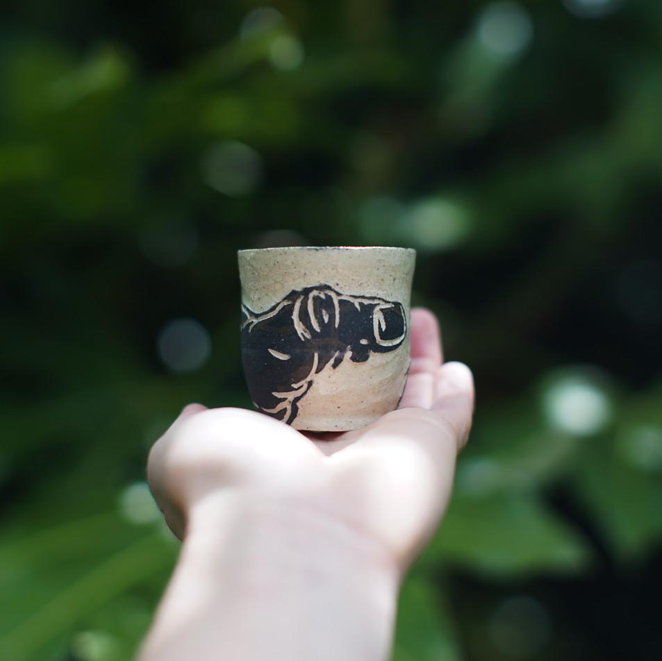 Finger Vessel