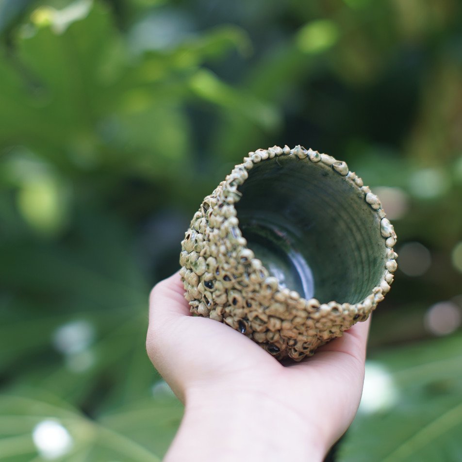 Urchin Vessel inside