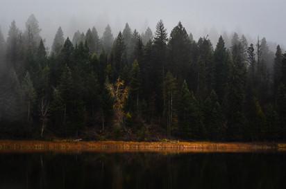 BC foggy lake