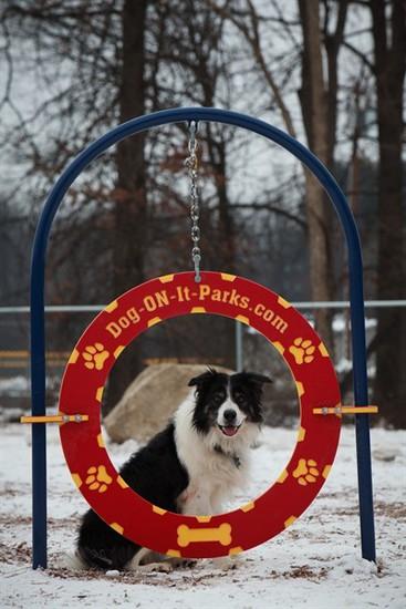 Doggies Park