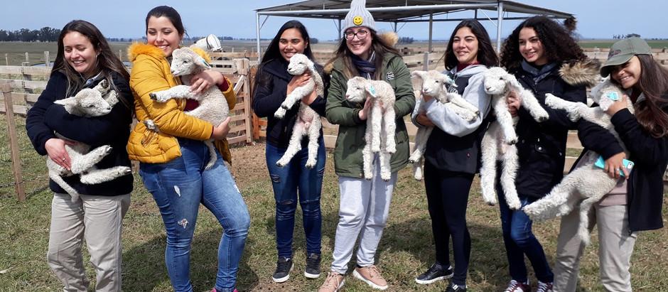 Consejo Agropecuario de Rivera promovió enriquecedora jornada de Conciencia Agropecuaria a liceales