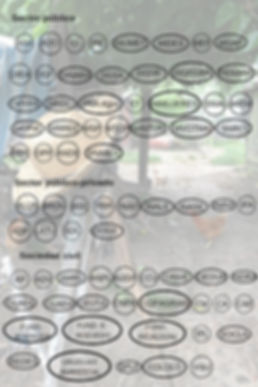 2B-mapa-de-actores1-683x1024.jpg