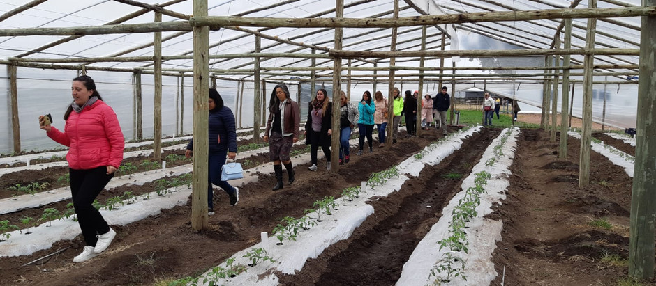 Maestros rurales dialogarán sobre Conciencia Agropecuaria durante un seminario de 4 jornadas