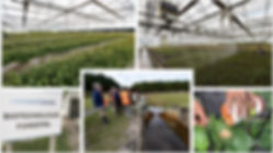 1-tecnologiainia-1024x576.jpg