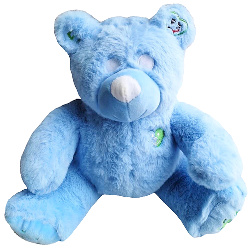 Auzy Bear Speaks for Non-Verbal Kids (English Only)