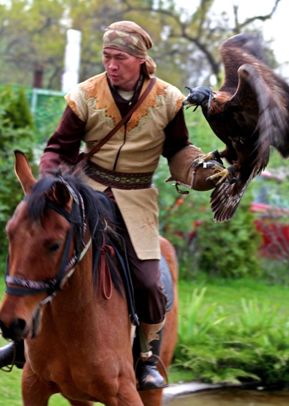 Aquila e cavaliere (Ak Sunkar Falconery – Kazakhstan aprile-maggio 2018)