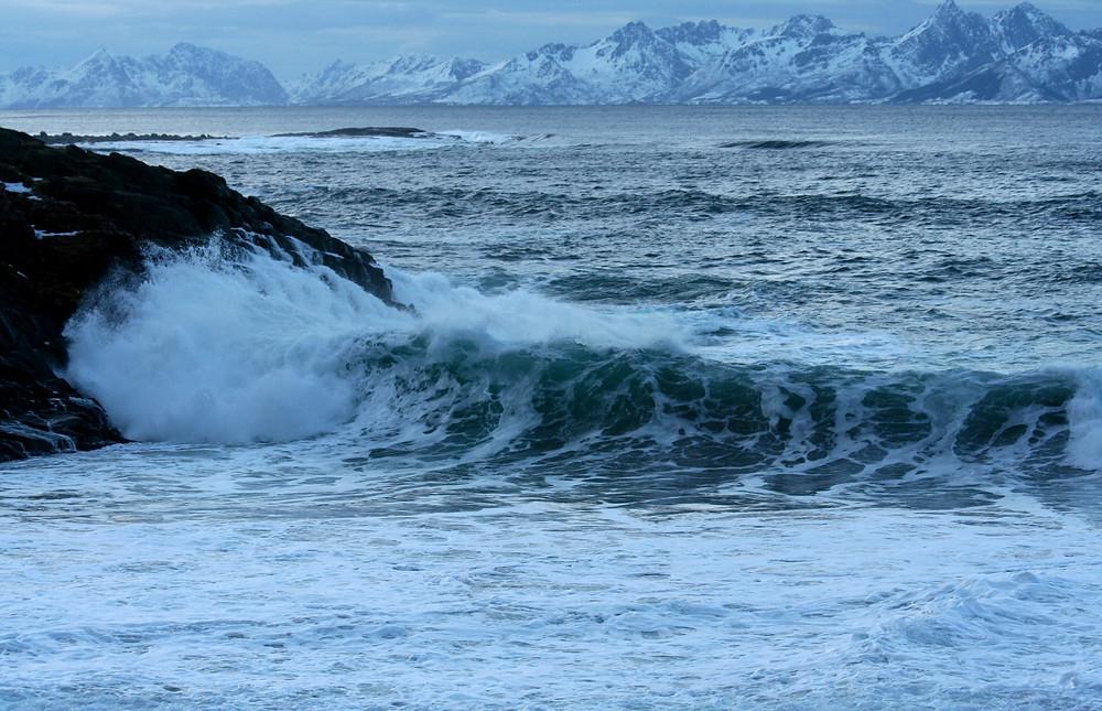 (Andøya - Isole Vesteralen, Norvegia – gennaio 2018)