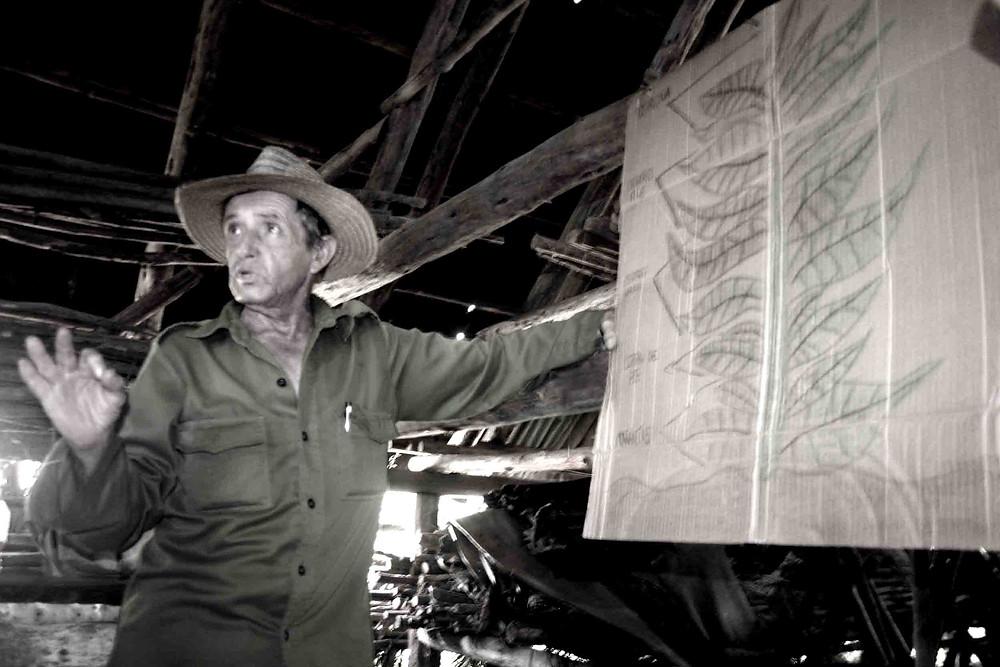 Martin spiega con una lavagna di cartone (Valle di Viñales – maggio 2017)