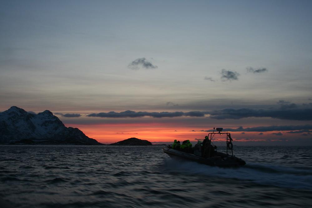 (Navigazione Trollfjord, Austvågøya, Isole Lofoten - Norvegia – gennaio 2018)