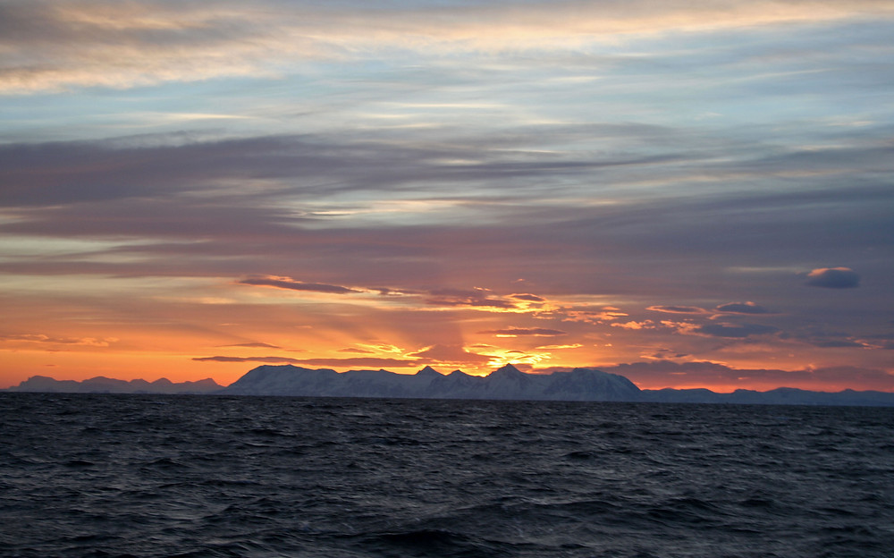 (A largo di Andøya - Isole Vesteralen, Norvegia – gennaio 2018)