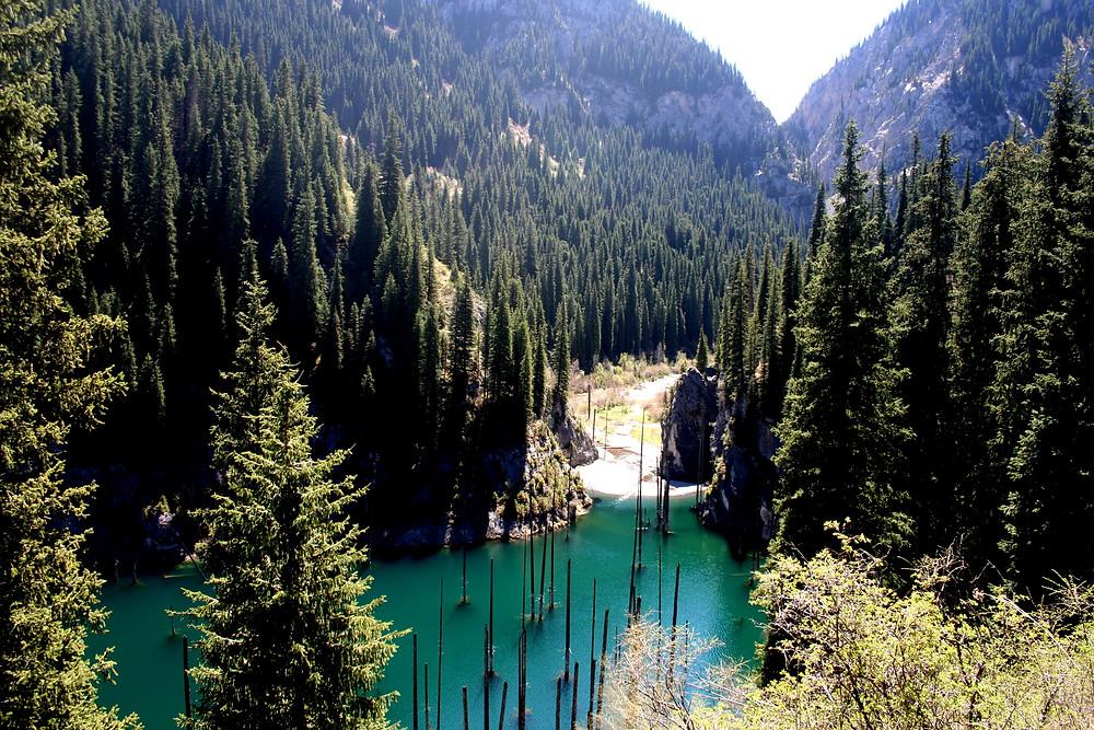 Un lago e la sua foresta sommersa (Kaindy lake – Kazakhstan aprile-maggio 2018)