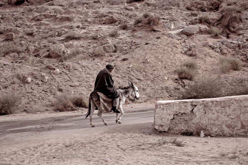 A dorso d'asino (Takassim – Algeria, novembre 2019)