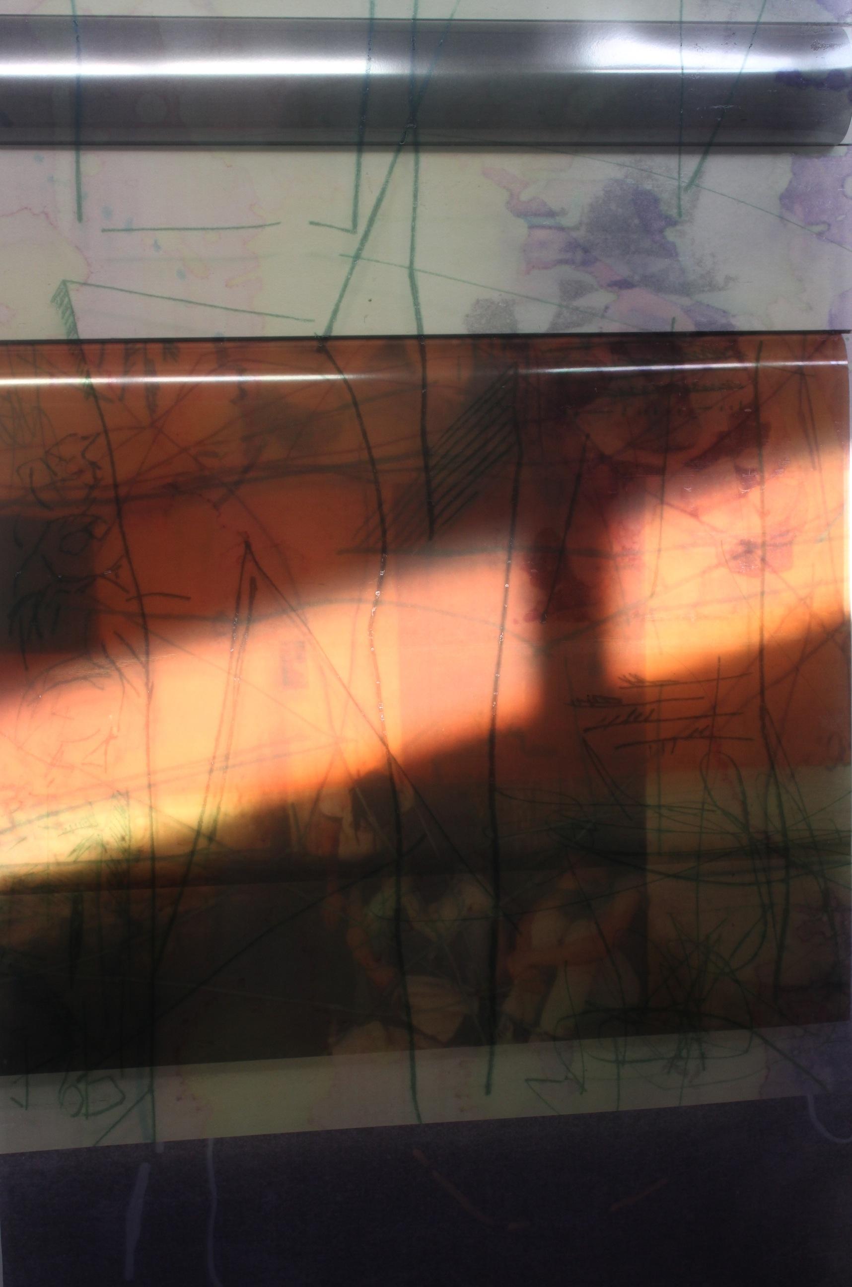 reverse with sunlight.jpg